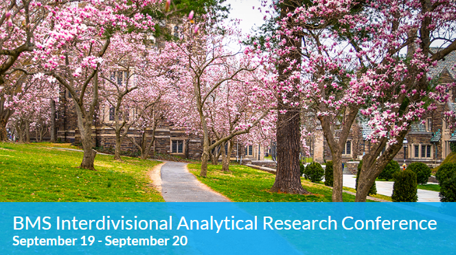 BMS Interdivisional Analytical Research Conference