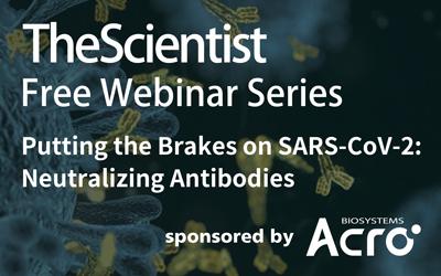 Putting the Brakes on SARS-CoV-2: Neutralizing Antibodies