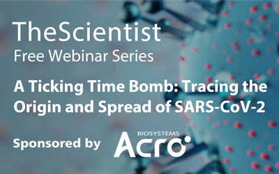 A Ticking Time Bomb: Tracing the Origin and Spread of SARS-CoV-2