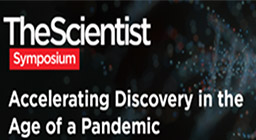 Accelerating Discovery in the Age of a Pandemic