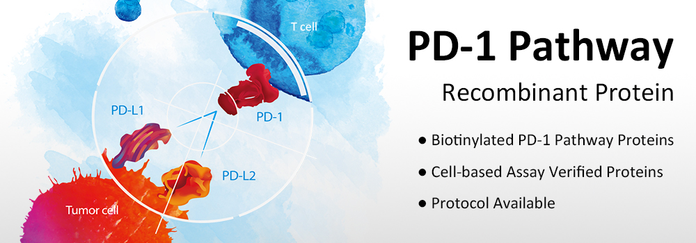 PD1 Pathway