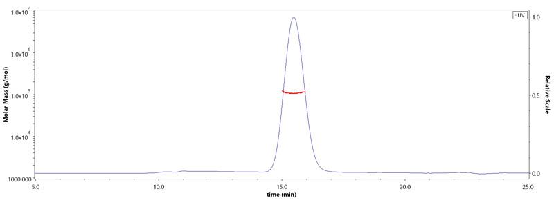 Human EGF Rの純度