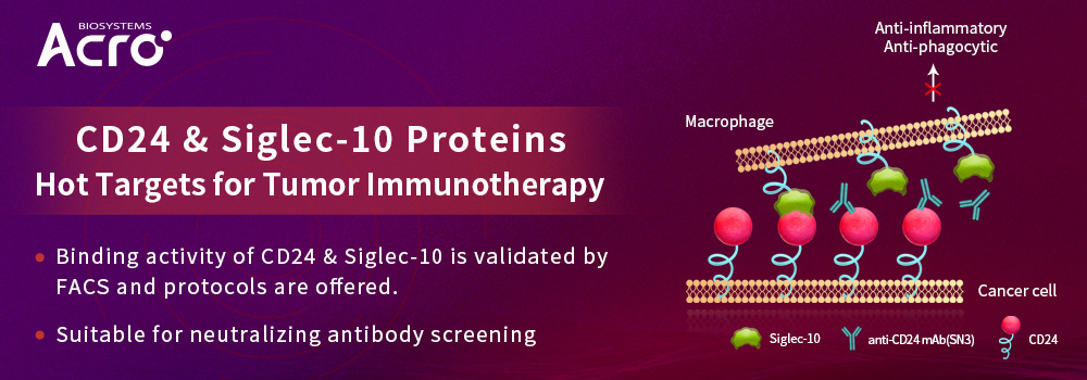 CD24 & Siglec-10 Proteins - Hot Targets for Tumor Immunotherapy