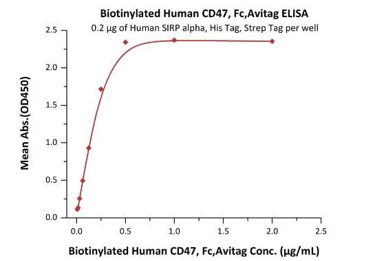 CD47とSIRPアルファの結合性