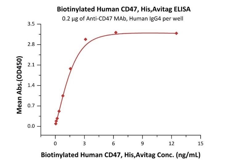CD47と抗CD47抗体の結合性