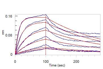 CD47とSIRPアルファの結合性(3)