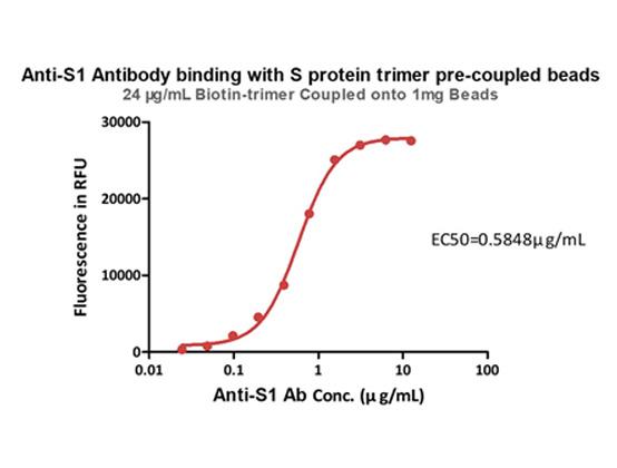 抗S1抗体の捕捉