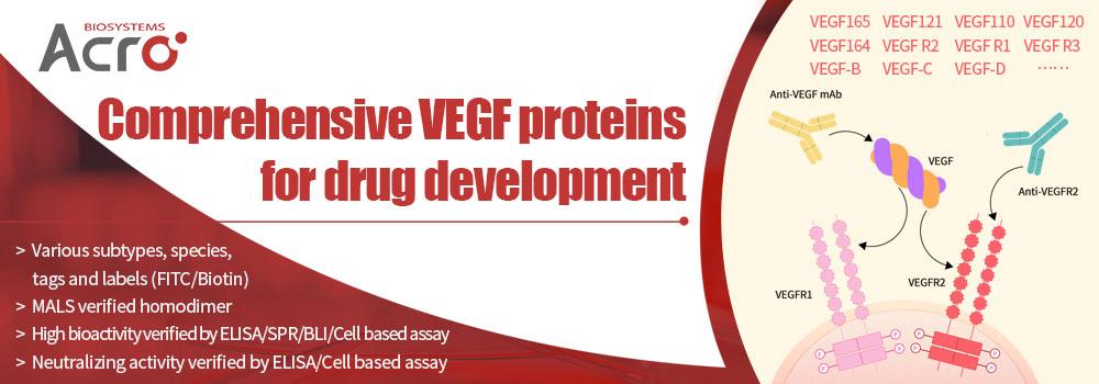 VEGF: Cutting off tumor's feeding channel