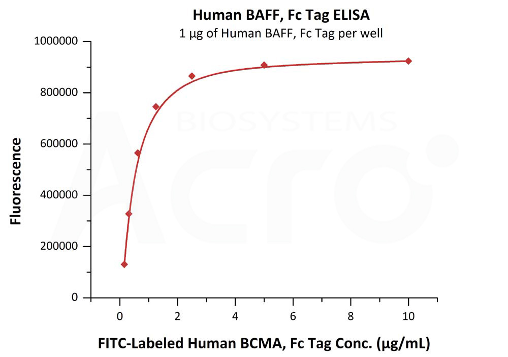 biotinylated human BCMA