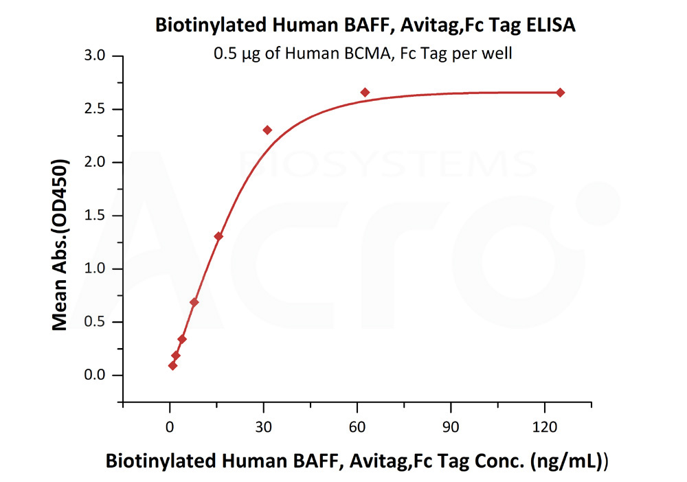 Biotinylated Human BAFF, Avitag,Fc Tag (active trimer) (MALS verified)Biotinylated Human BAFF, Avitag,Fc Tag (active trimer) (MALS verified) (Cat. No. BAF-H82F3) ELISA bioactivity