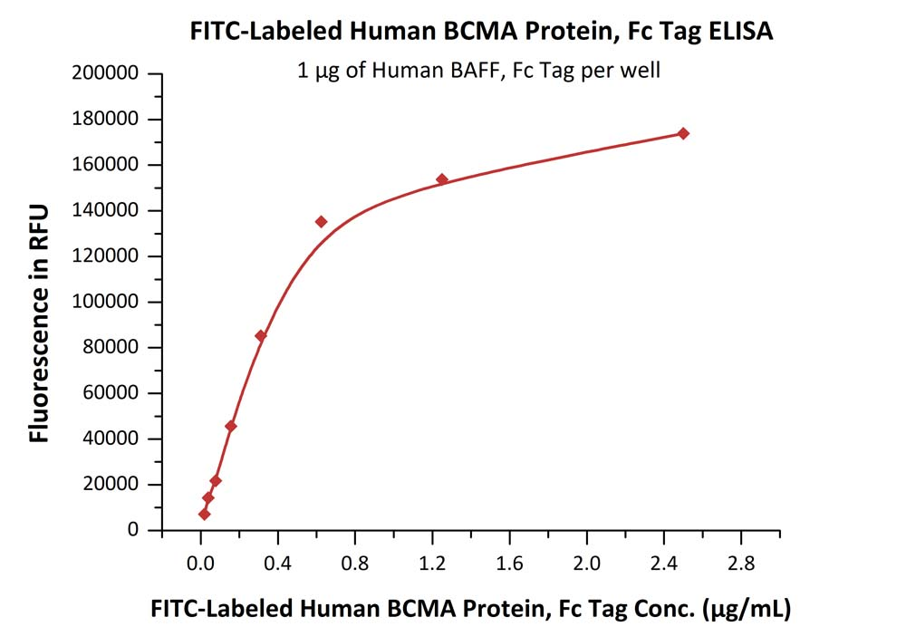 FITC-Labeled Human BCMA, Fc TagFITC-Labeled Human BCMA, Fc Tag (Cat. No. BCA-HF254) ELISA bioactivity