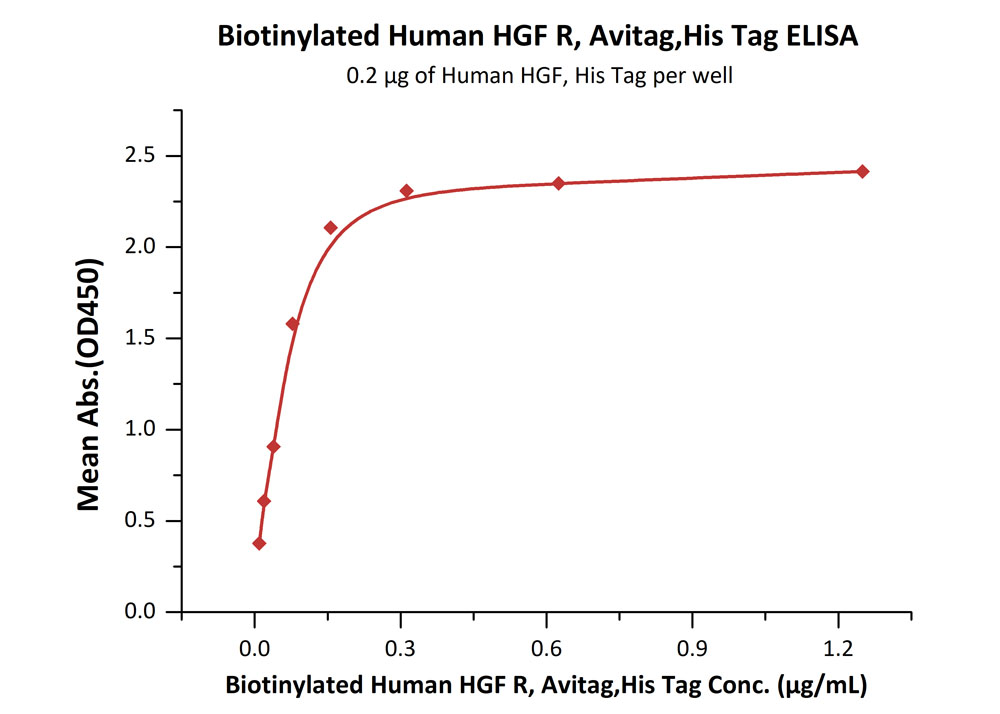 Biotinylated Human HGF R, His TagBiotinylated Human HGF R, His Tag (Cat. No. MET-H82E1) ELISA bioactivity