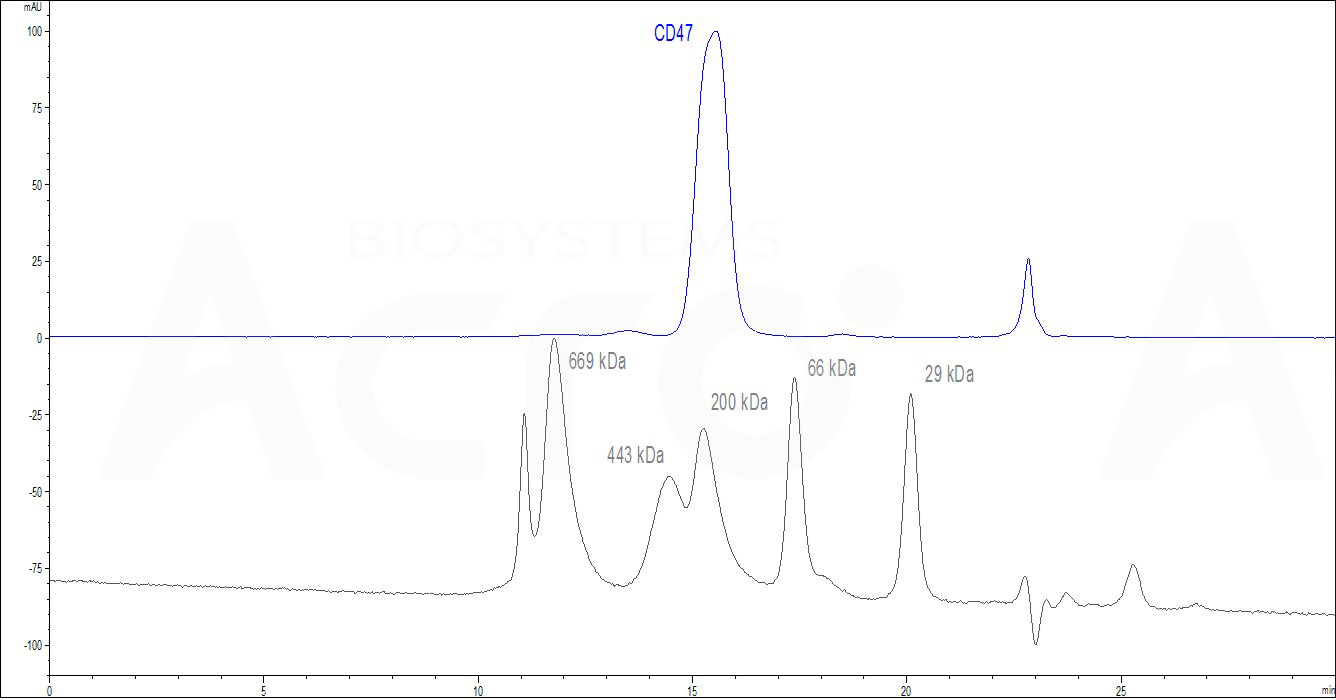 Human CD47, Fc Tag (HPLC-verified) (Cat. No. ) HPLC images