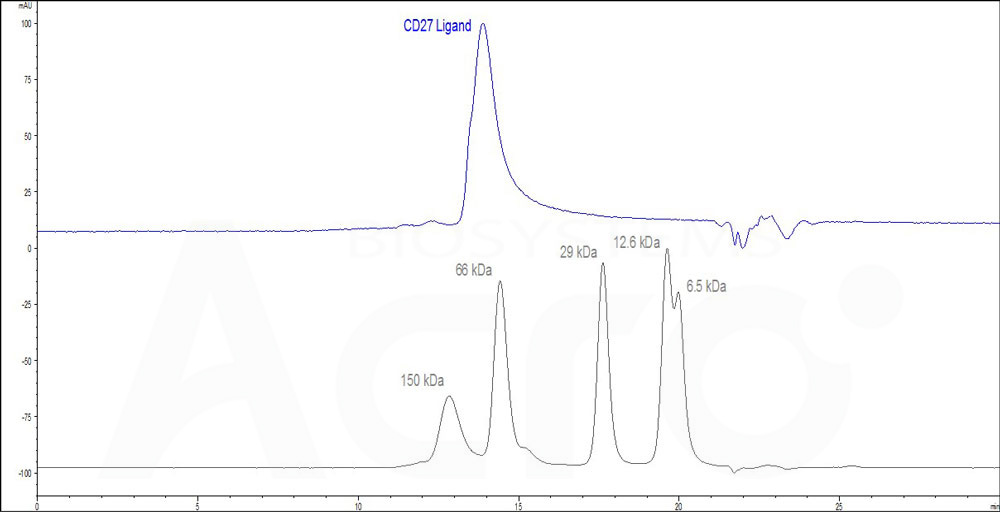 Mouse CD27 Ligand (active trimer) (HPLC-verified) (Cat. No. ) HPLC images