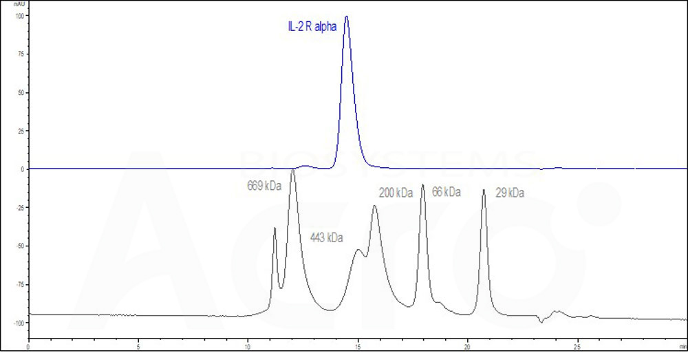 Human IL-2 R alpha Protein, Fc Tag (HPLC-verified) (Cat. No. ) HPLC images