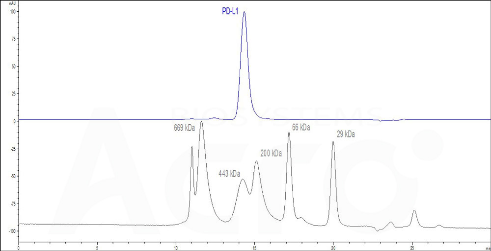 Human PD-L1, Fc Tag (Cat. No. ) HPLC images