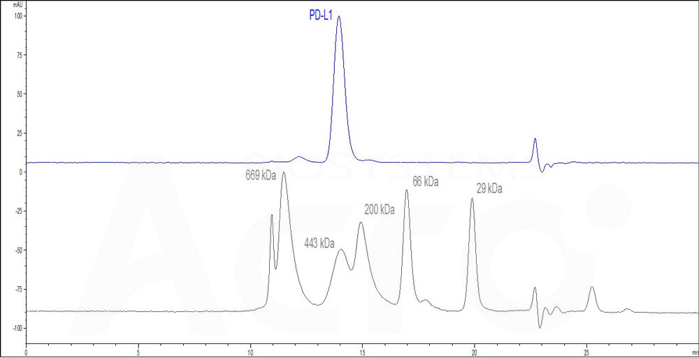 Human PD-L1, Mouse IgG1 Fc Tag, low endotoxin (HPLC-verified) (Cat. No. ) HPLC images