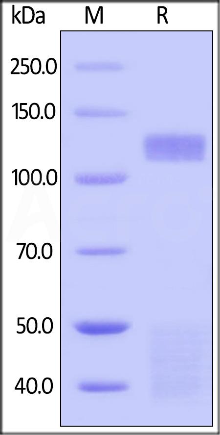 Biogenomics hr